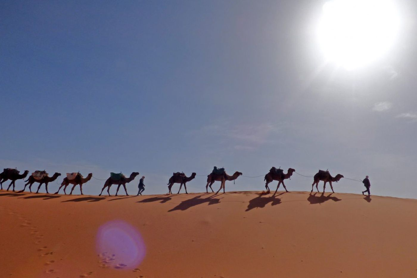 Camels, casbahs and more make for a magical visit to Morocco