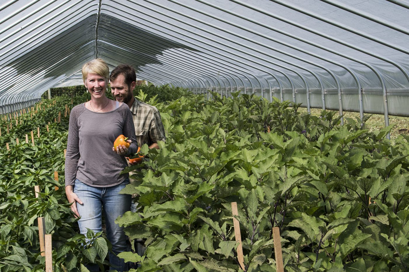As land prices climb, small farmers look to leasing as a way to stay in the game