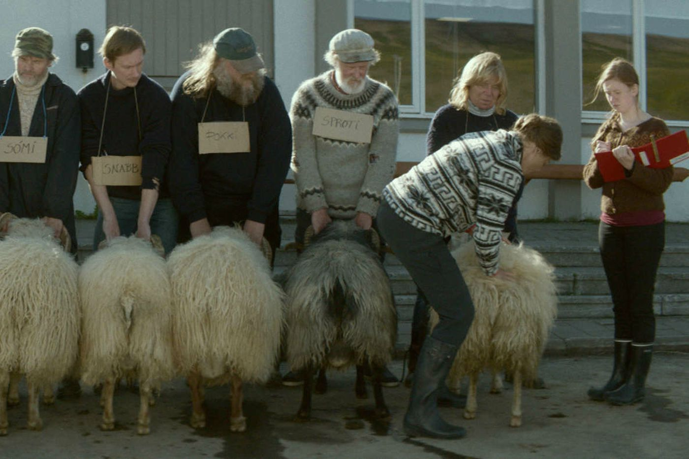 'Rams': From Iceland, a funny and affecting yarn