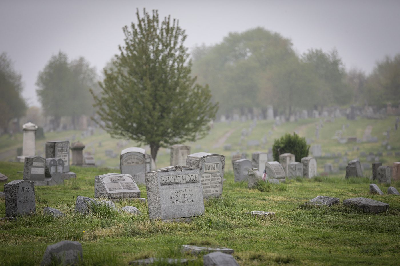 Why was a Delco musician found fatally shot inside a crypt in a Philly cemetery?