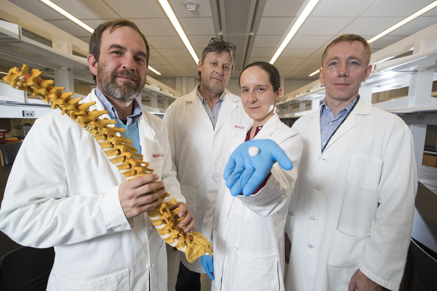 A fix for back pain? Scientists test bio-synthetic discs in goats.