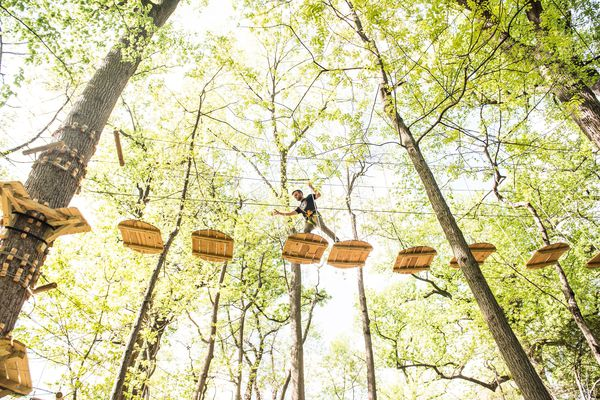 Treetop Quest brings a sky-high obstacle course with 19 zip-lines to West Fairmount Park