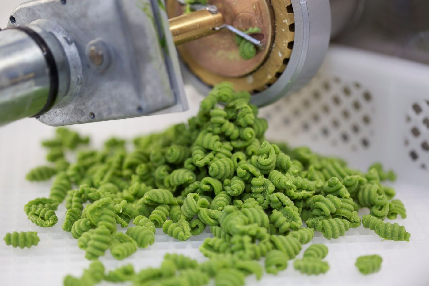 Pasta revolution hits extruder overdrive, and creativity, collaborations, and profits emerge