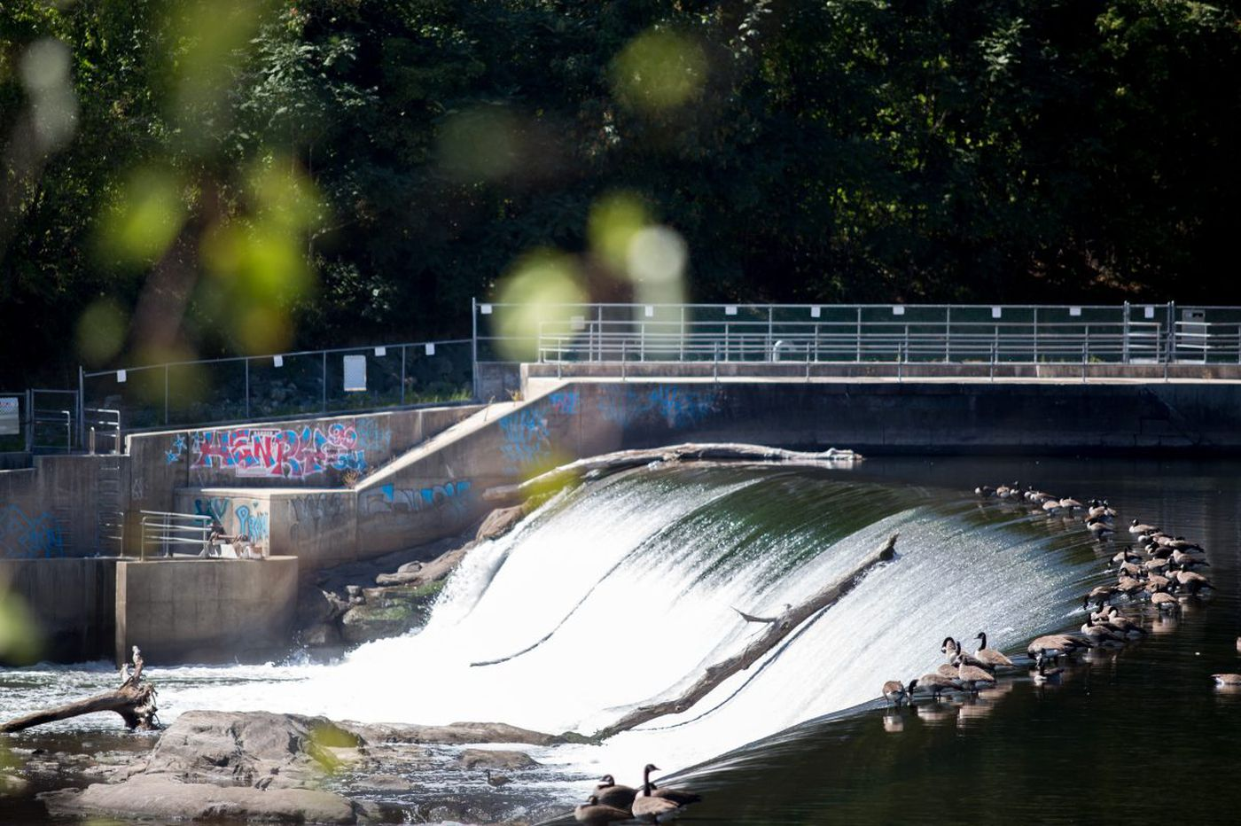 New life for the dammed? Philly issues call for hydro-energy projects