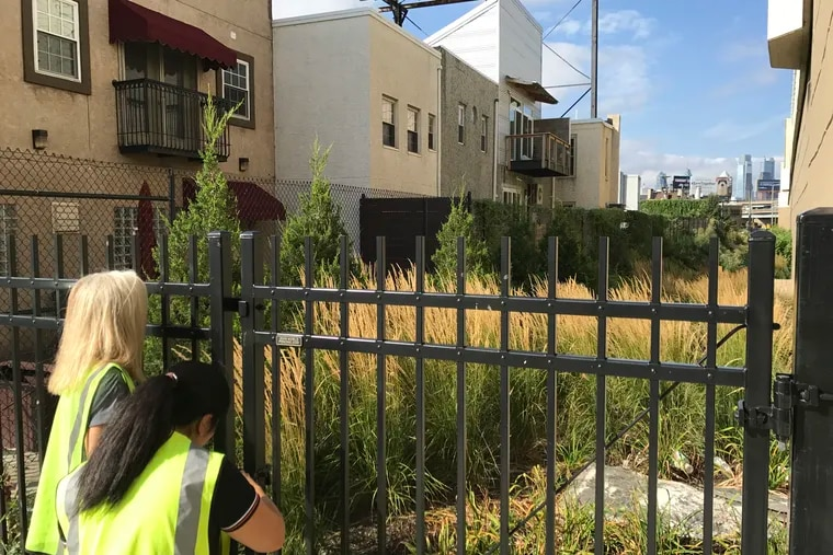 A rain garden in Fishtown that prevents stormwater from entering the sewer system. More environmentally friendly stormwater management, to ensure healthier rivers and creeks, is one goal of Philadelphia's Green City, Clean Waters plan.