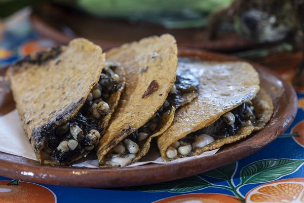 South Philly Barbacoa: Come for lamb tacos, stay for quesadillas with house-made Oaxaca cheese and fresh huitlacoche