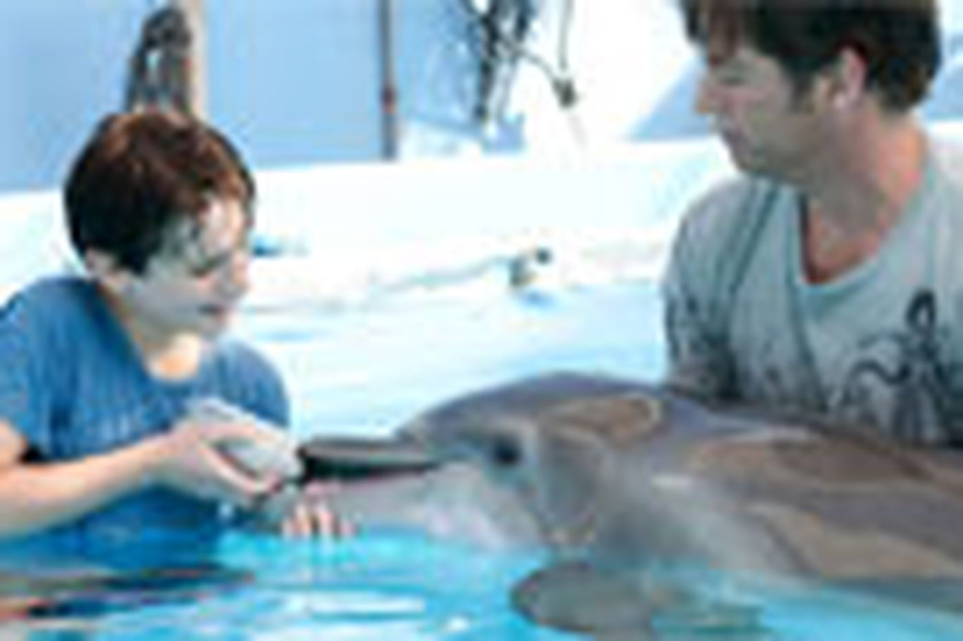 Fine tale about a dolphin's tail