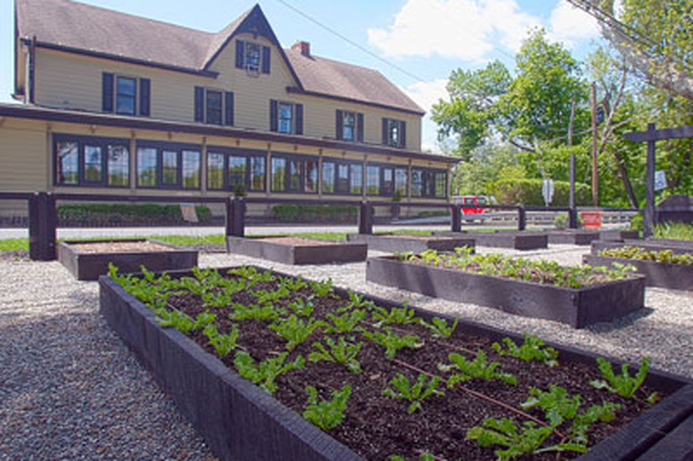 Close as can be: Chefs growing their own