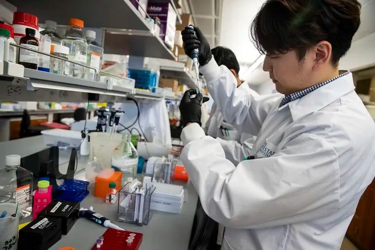University of Pennsylvania graduate student Daniel Park testing a coronavirus vaccine at the Wistar Institute in February.