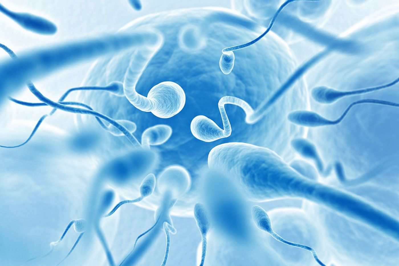 5 questions: Declining sperm counts and infertility