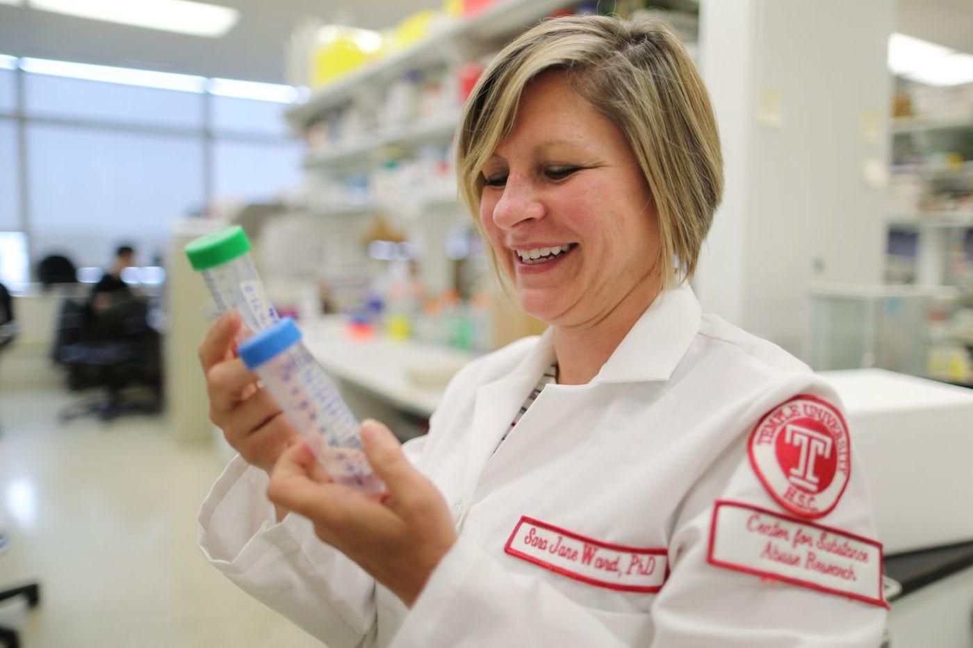 Temple U. researchers take a leading role in medical marijuana studies