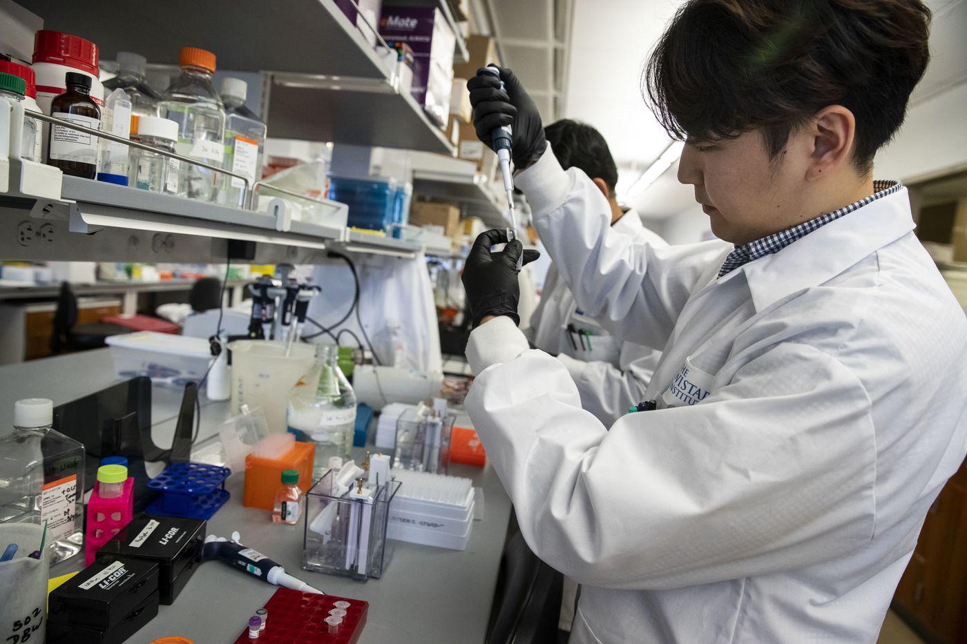 University of Pennsylvania graduate student Daniel Park tests a coronavirus vaccine at the Wistar Institute in February.