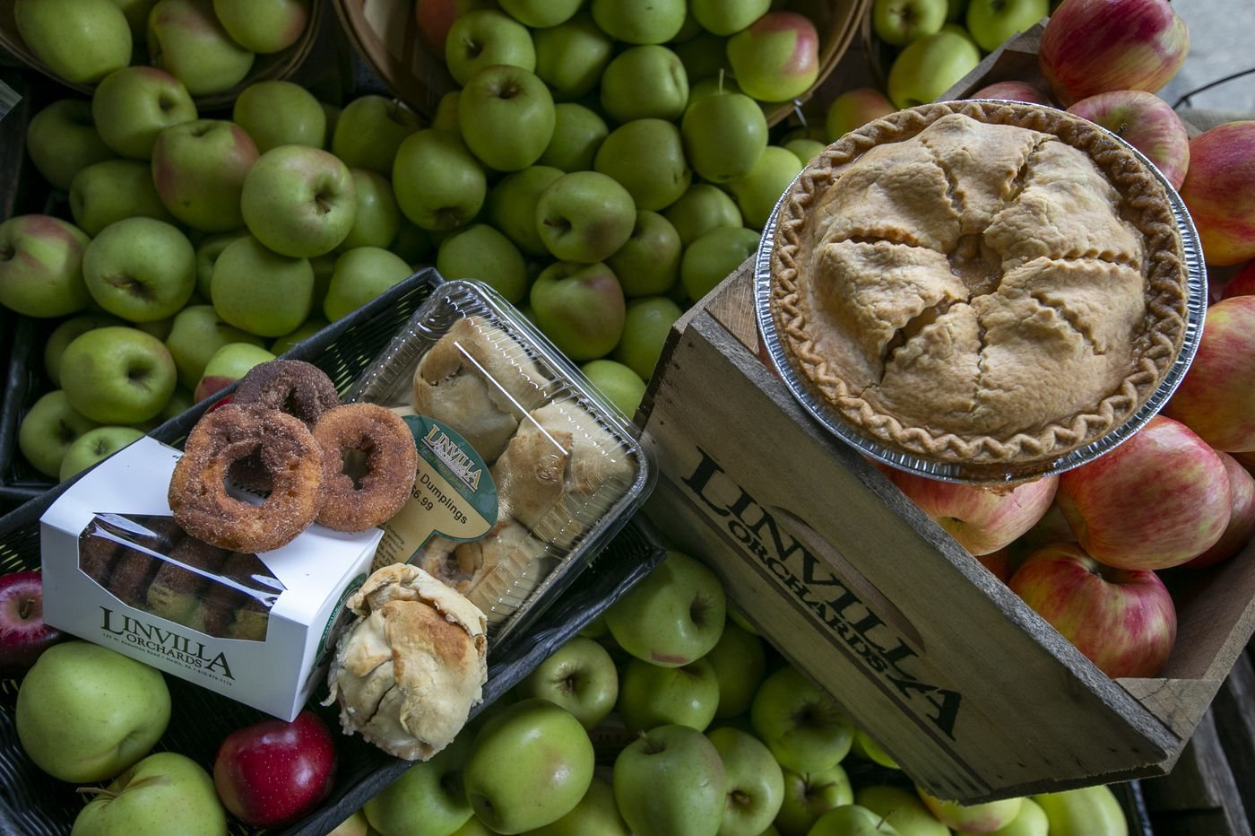 8 places to pick your own apples near Philly, and grab doughnuts and cider, too