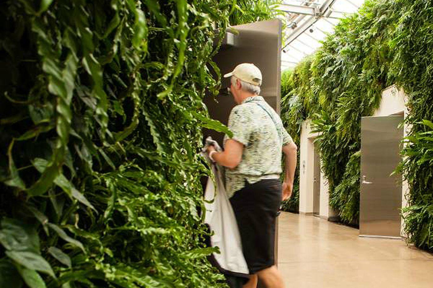 Longwood Gardens wins best bathroom contest