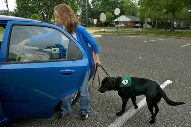 """Stephanie Kerrigan, a Rowan University psychology major, with Harrison, her Seeing Eye dog-to-be. Taking him to class is a challenge, she says, because """"he tends to snore."""""""