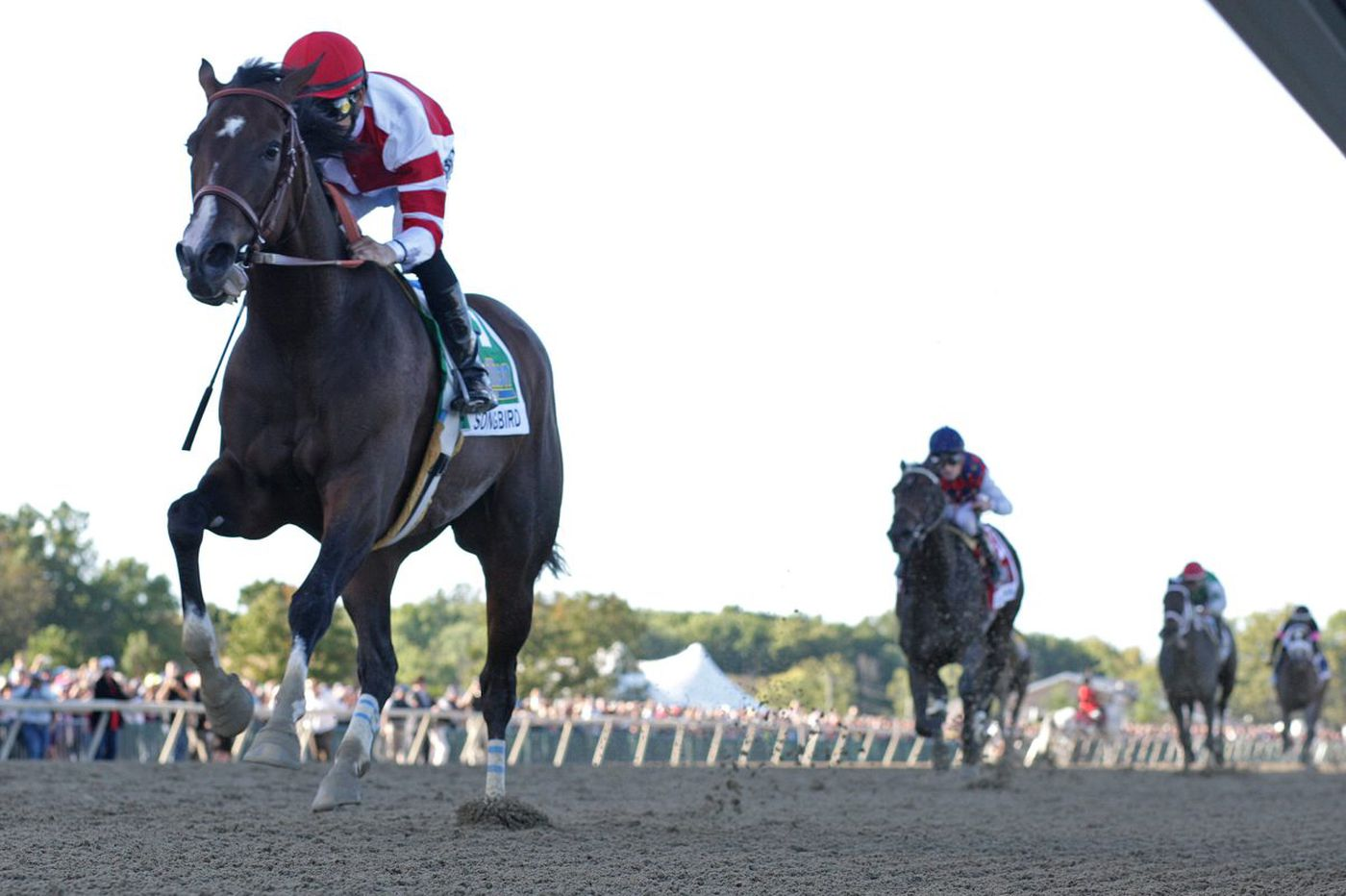 Delaware Park's opening day a unique horse-racing experience