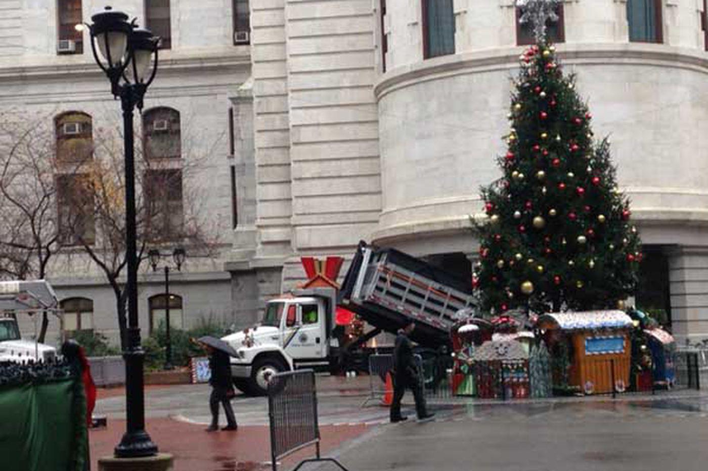 City Hall Christmas tree to be lit Wednesday night