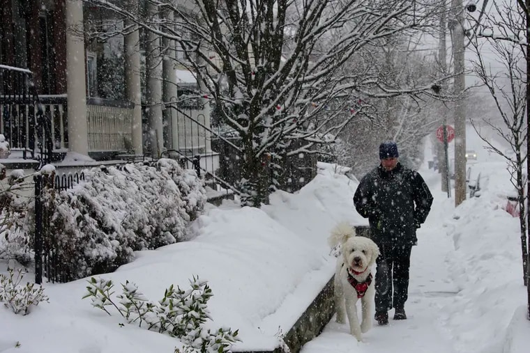 A man walks his dog in Chestnut Hill as snow falls last February in what turned out to be the nation's coldest February in more than 30 years.