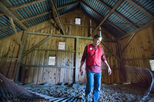 Pennsylvania's iconic barns are in peril, and one county is fighting to preserve them