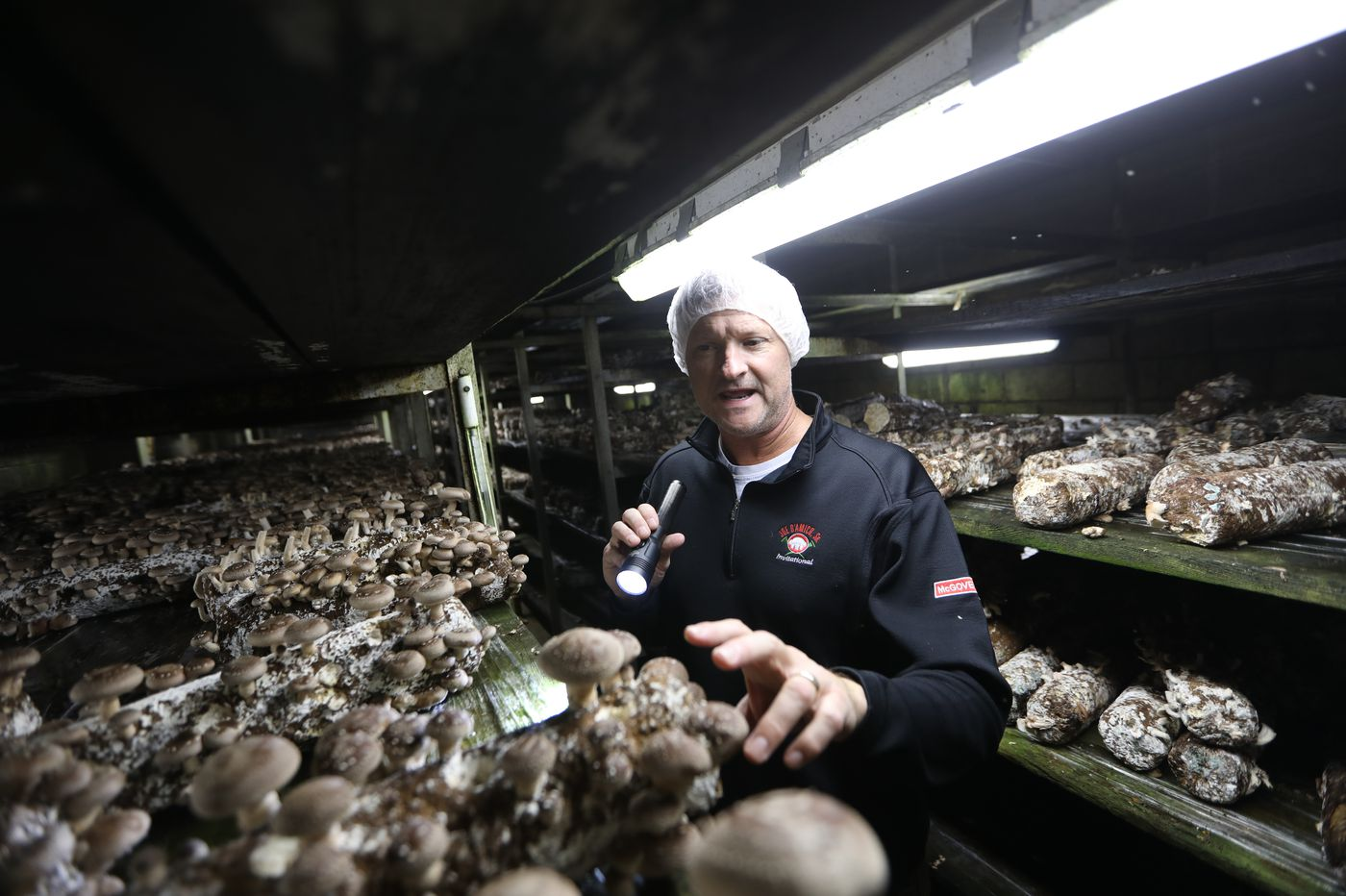 Mushroom politics: Chesco farms seek immigrant workers