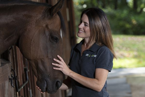 On a Chester County farm, these horses help people heal. Soon, they'll need a permanent home.