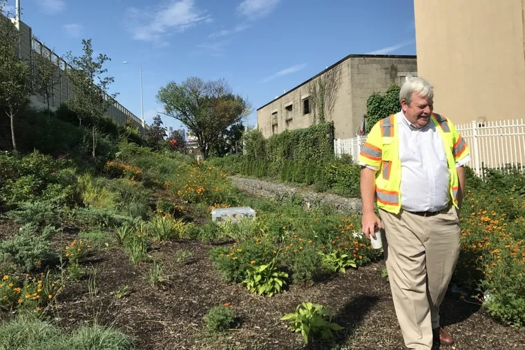 PennDot, Villanova, and Temple are collaborating on a project to install rain gardens as a way of preventing stormwater runoff from the I-95 expansion from flowing into the city's overtaxed system. Villanova Professor Robert Traver inspects one of them.