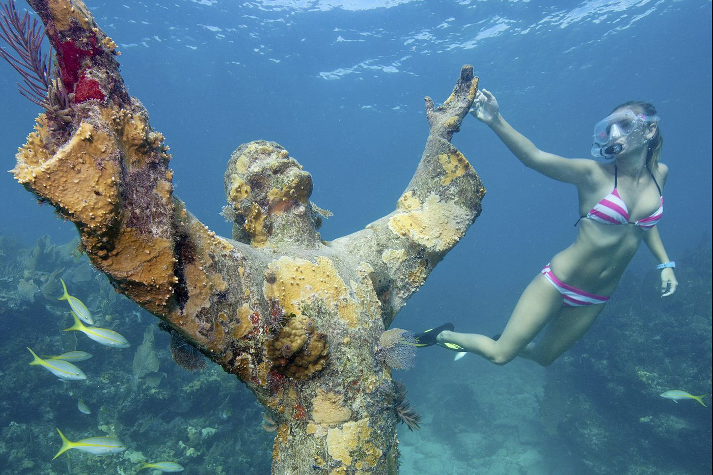 In Key Largo, coral reefs have benefited from hurricane