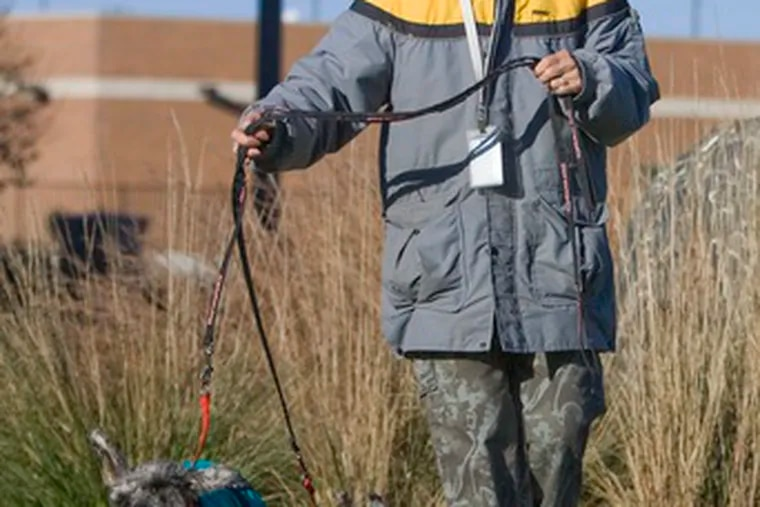 A Humane Society volunteer in Omaha walks two schnauzers who were dropped off anonymously by someone who said he or she could no longer afford to keep them.