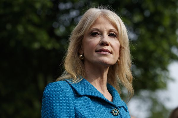 Trump says he won't fire Kellyanne Conway for violating Hatch Act, defends her 'free speech'