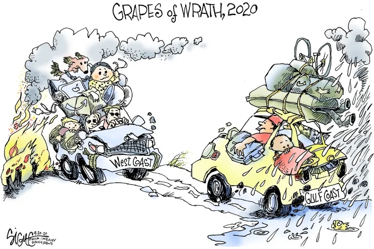 2020 Grapes of Wrath.
