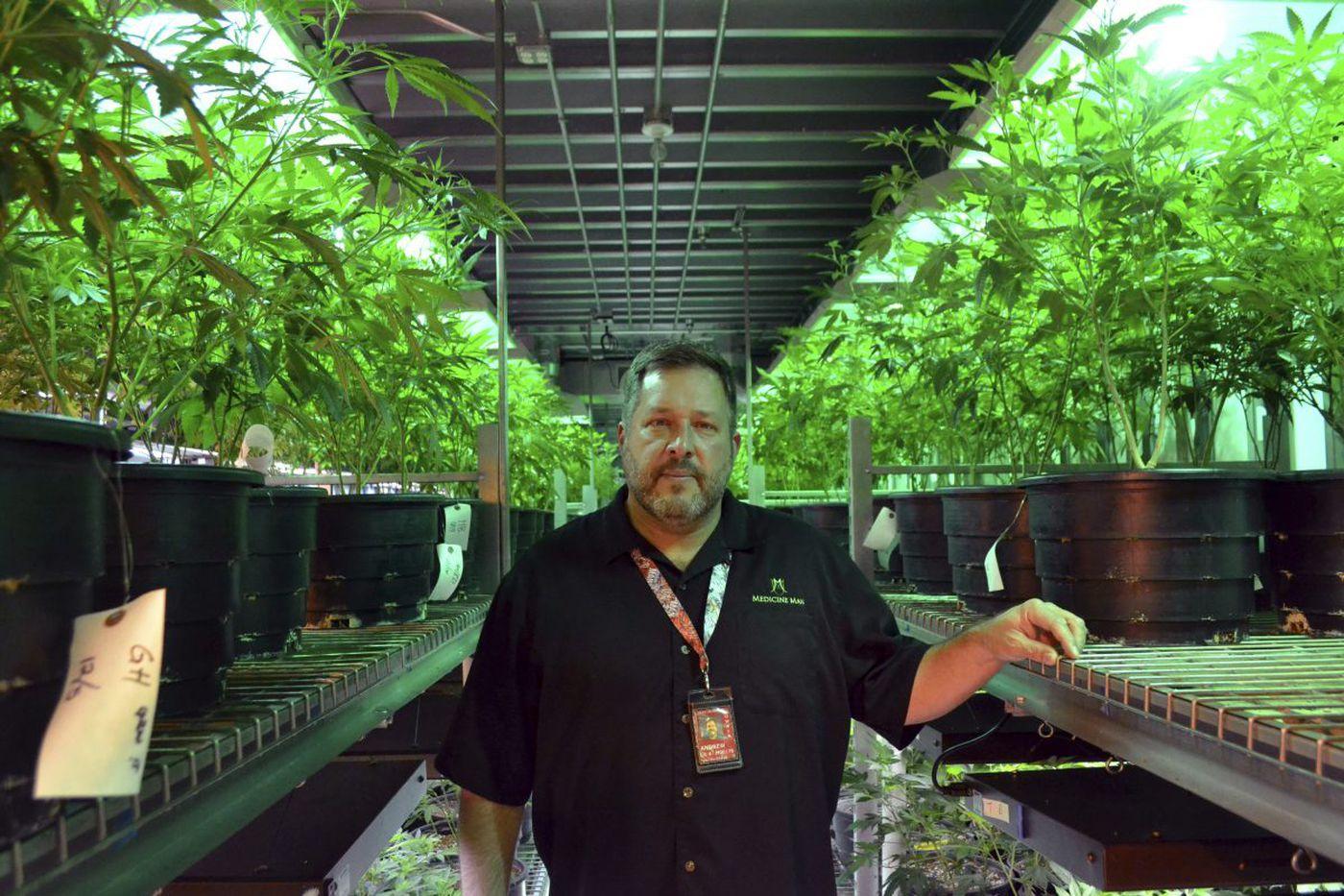 How Congress could block Trump, Sessions on marijuana prosecutions