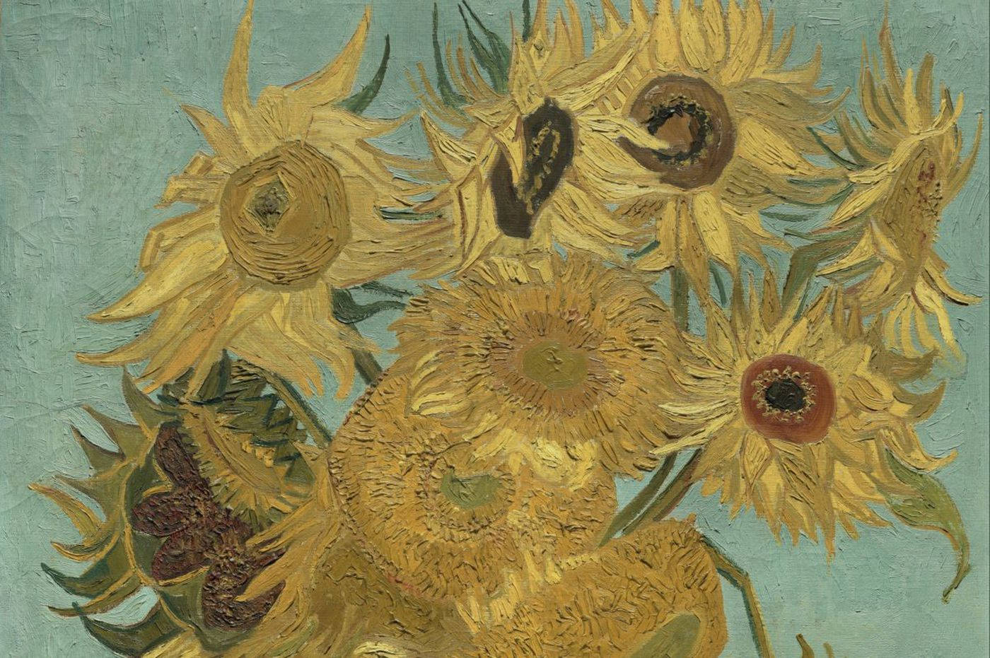 Van Goghs Sunflowers From Around The World Including The Ones At