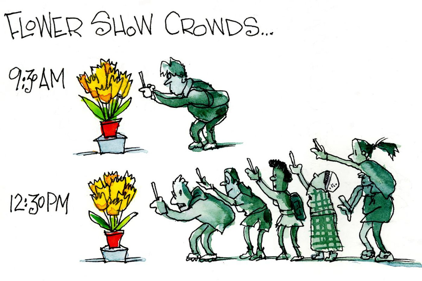Sketches from the Philadelphia Flower Show