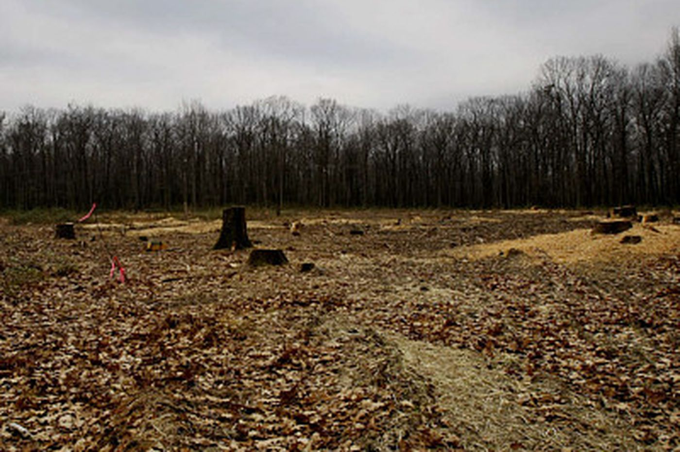 Activists push Pa. to restrict drilling in tract