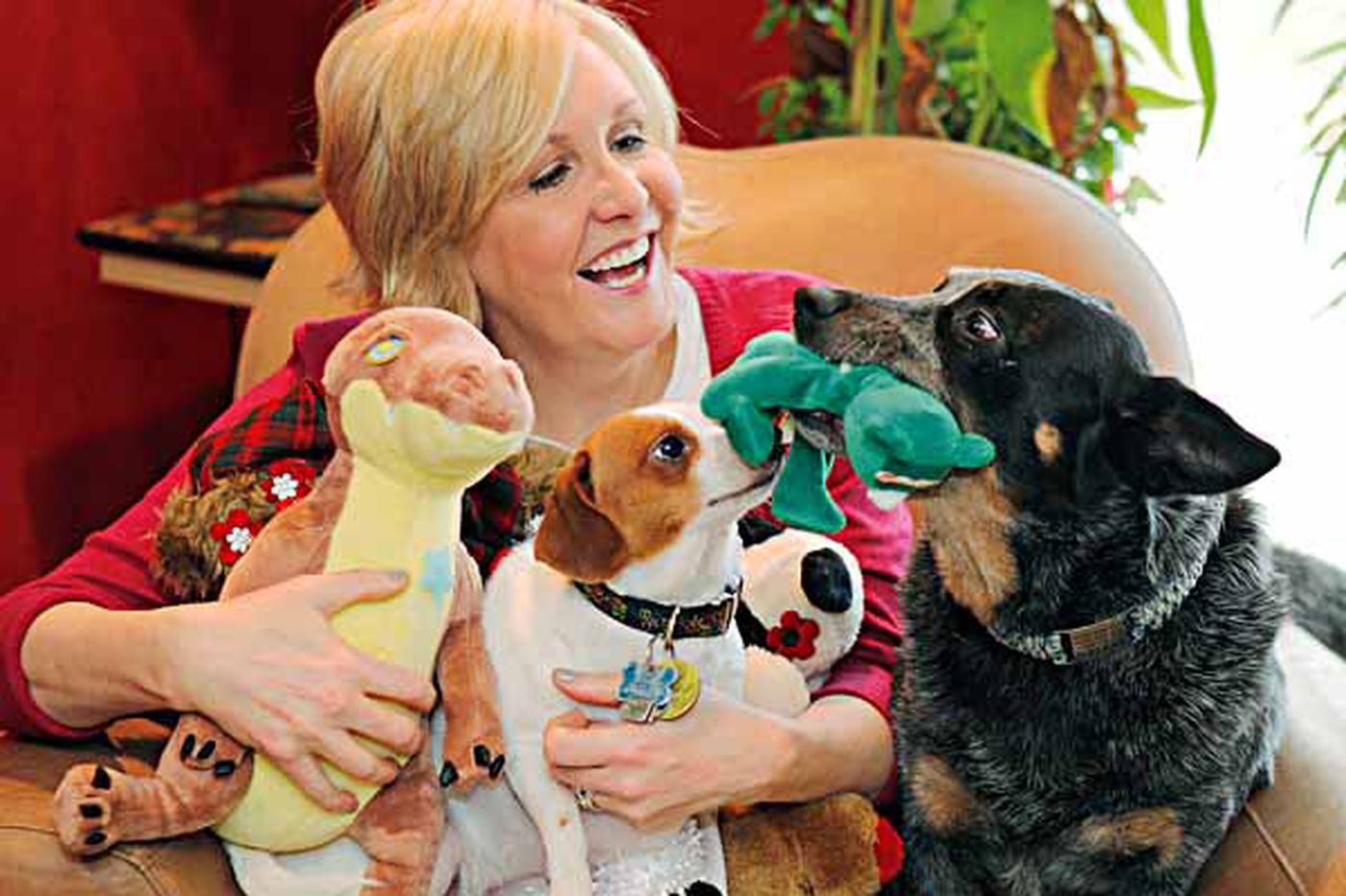 Old toys become pet fun and promote spaying, neutering
