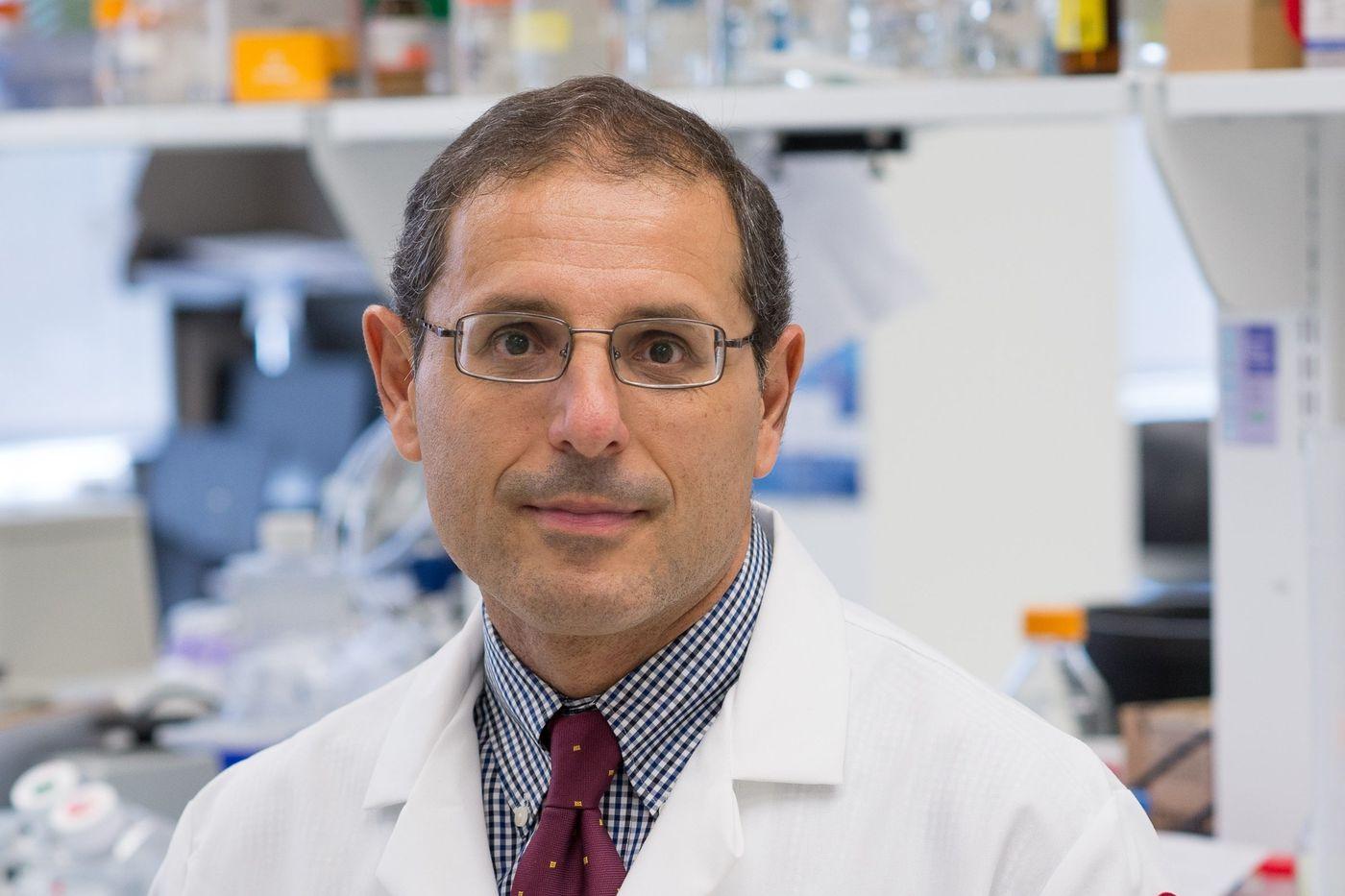 An asthma drug shows promise against Alzheimer's