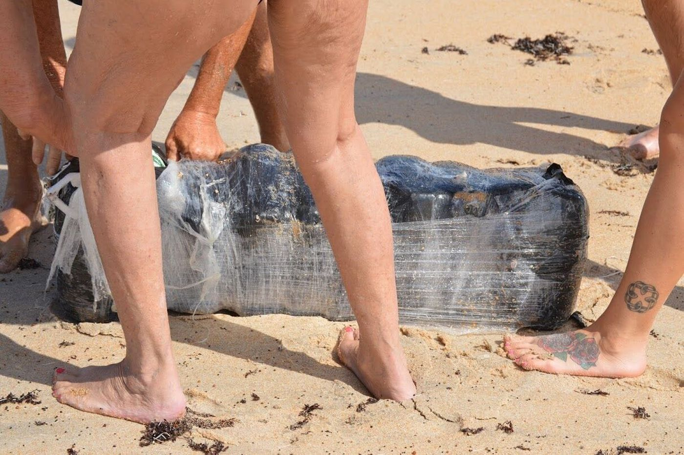 Weed washes up on Florida beaches, but don't fight over it