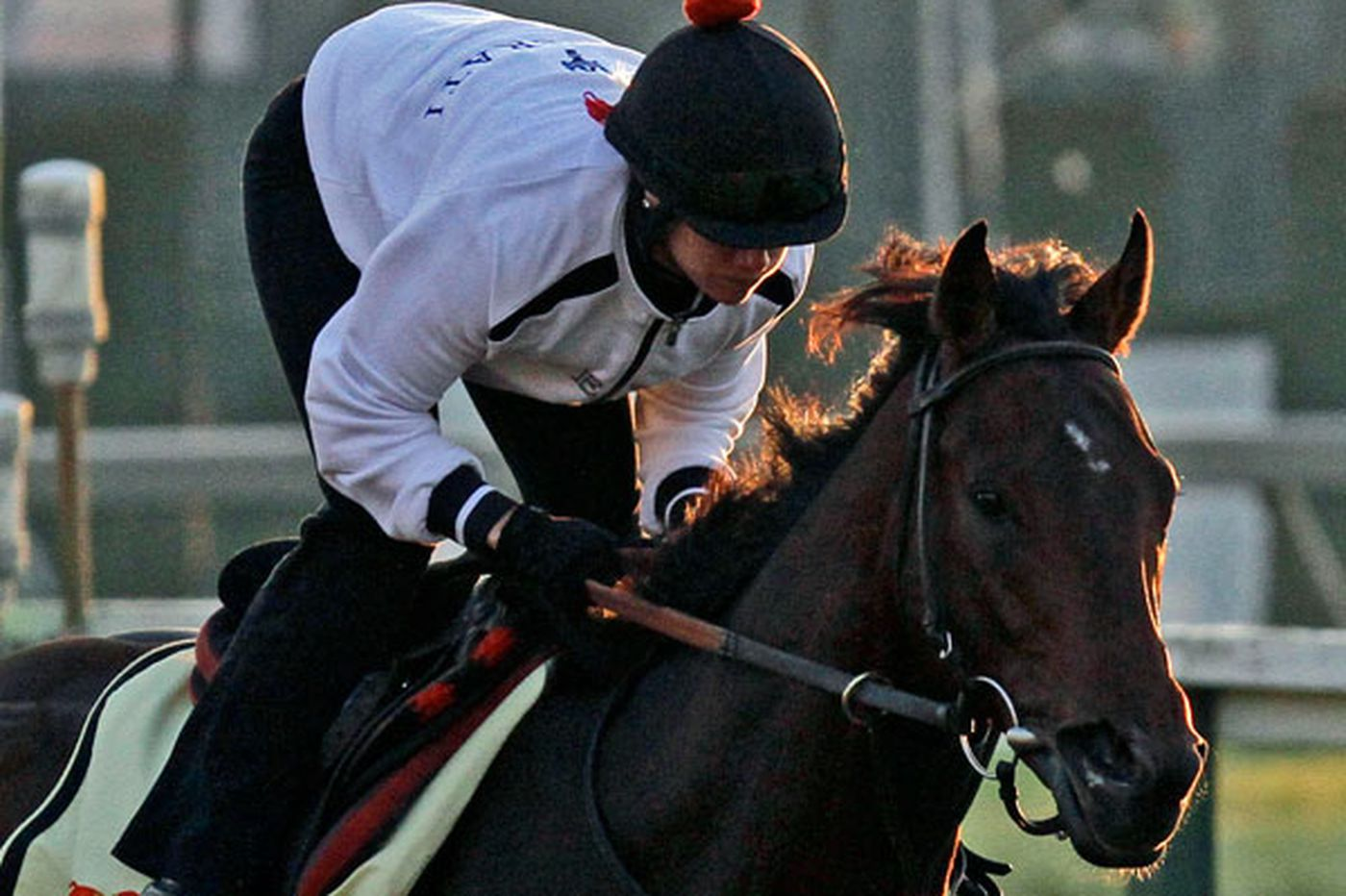Orb's team wants to build on Derby success