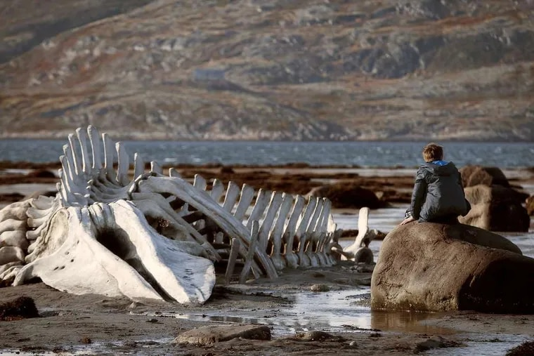 """Sergey Pokhodaev in a scene from """"Leviathan,"""" a tale of greed and corruption set on the Barents Sea."""