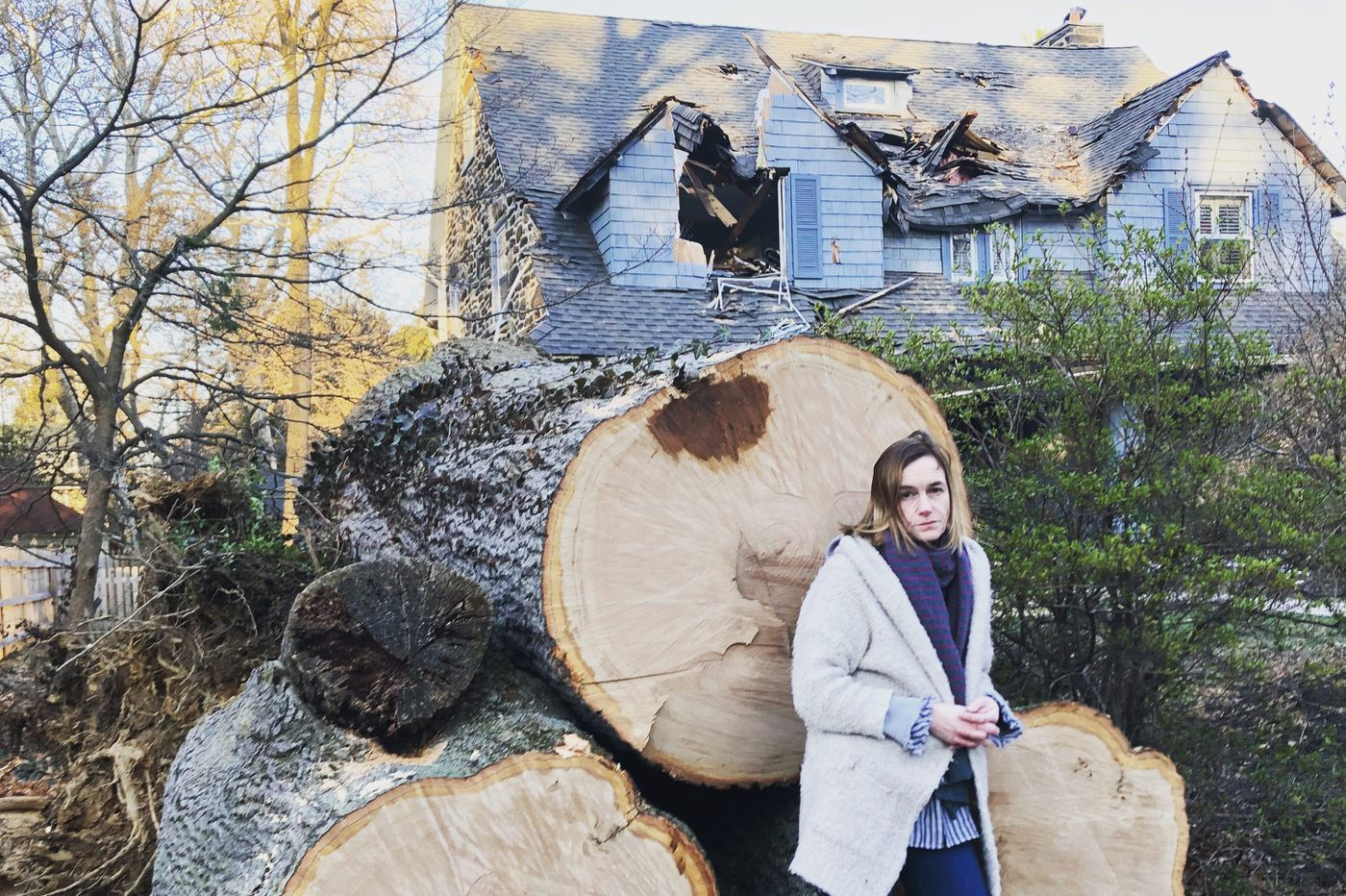 A nor'easter toppled a huge oak tree onto my house. Here's what happened next