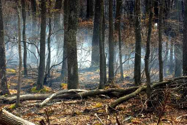 File Photo: Smoke from a fire that burned in 2005 in the same area as the blaze that was contained overnight in Wharton State Forest.