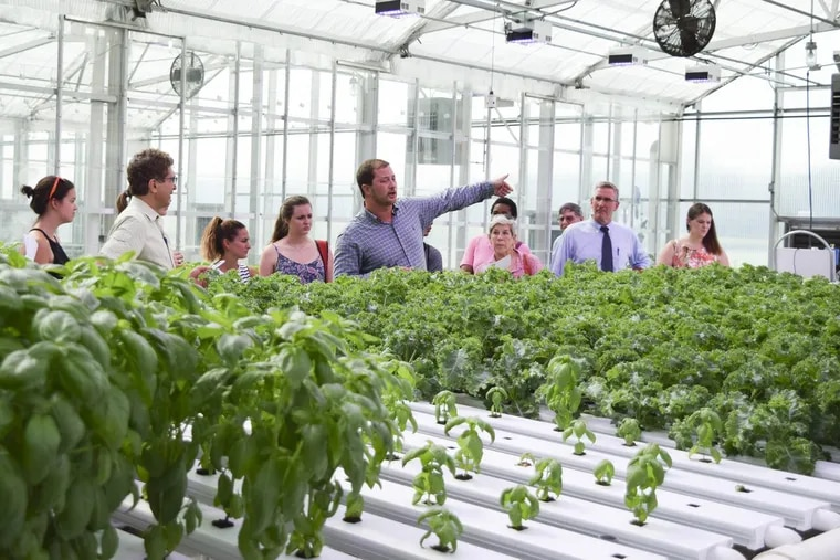 Chris Filling, greenhouse manager at Delaware Valley University, leads guests from the Pennsylvania Department of Agriculture on a greenhouse tour. The 2016 visit was part of an effort to educate the public about hydroponics and aquaponics.