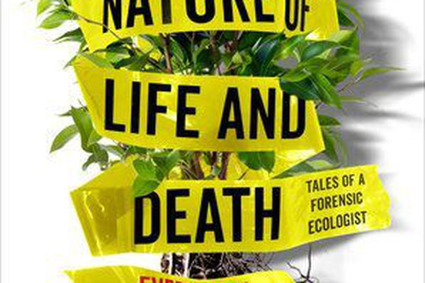 By studying a few grains of pollen, she can trace a murderer's footsteps | Book review