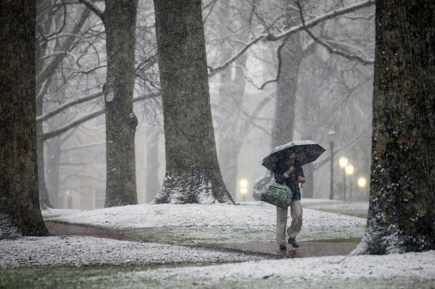 Officially, Raleigh, N.C., has had eight times as much snow as Philly this season