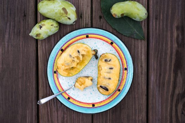 Pawpaws: Where to find and how to eat fall's best secret treat