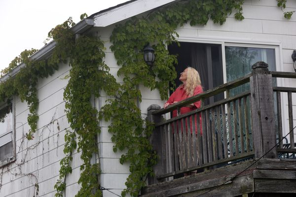 An eyesore or environmental attraction? Jersey Shore homeowner in legal fight to protect her vines.