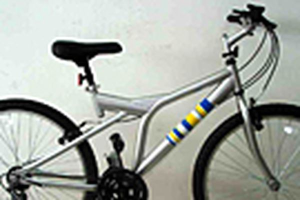 Ikea gives bicycles to its workers