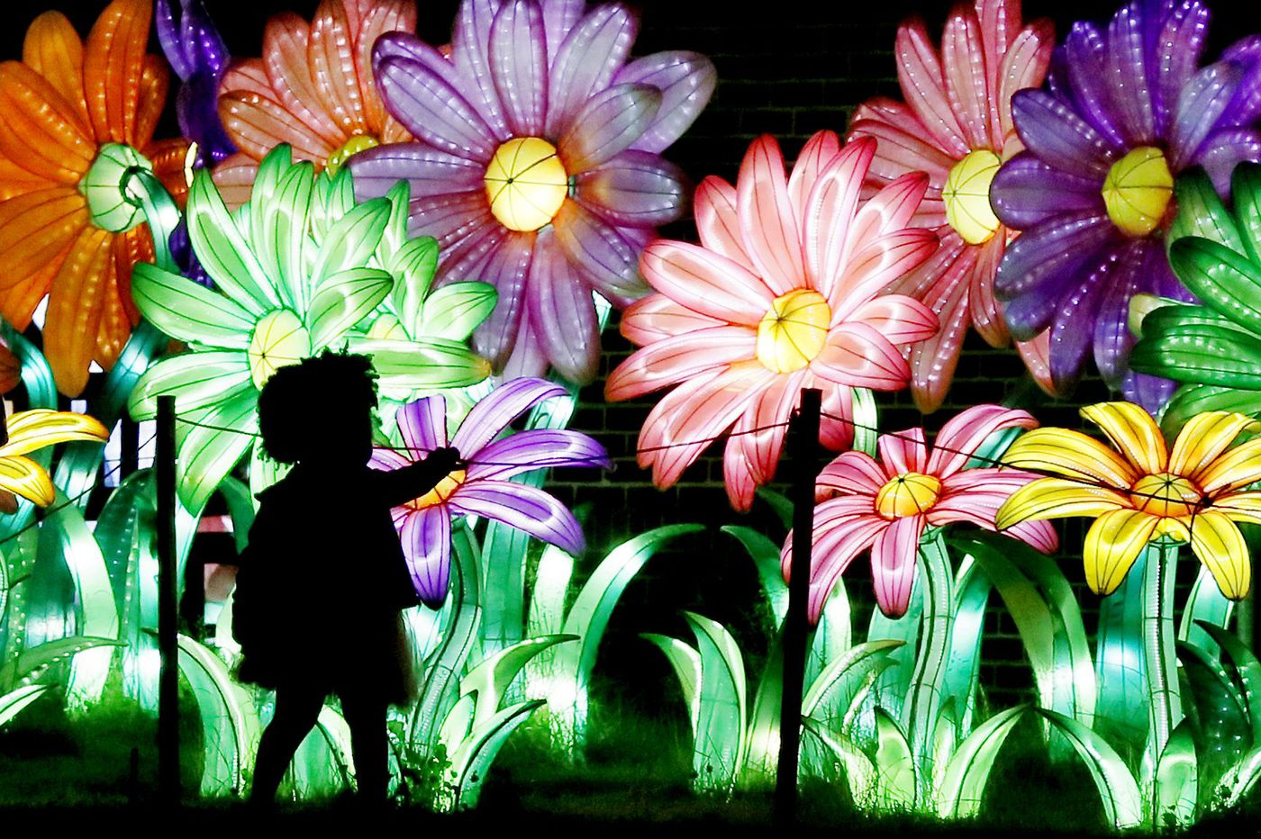 Chinese Lantern Festival extended to July 8