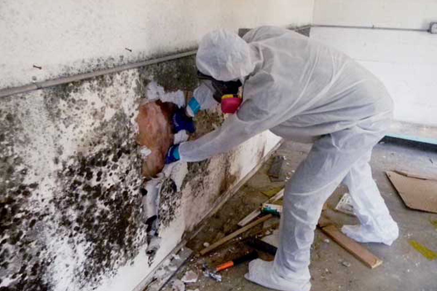 Your Place: Readers weigh in on too-costly mold removal