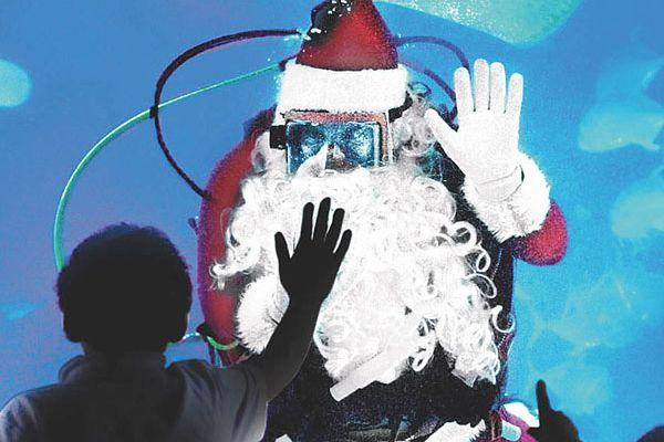 'Tis the season for Scuba Santa at Camden's aquarium